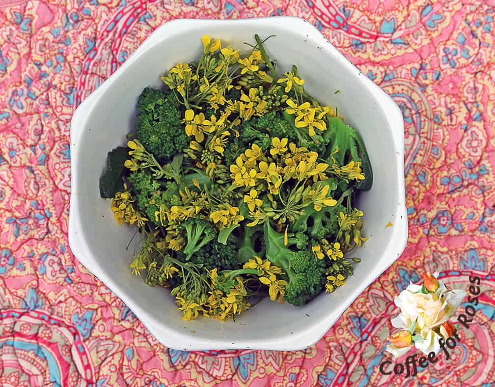 This broccoli flower salad is pretty, healthy and tasty too. And by removing all the stems of broccoli flowers you'll be stimulating the plant to produce more side shoots of broccoli crowns.
