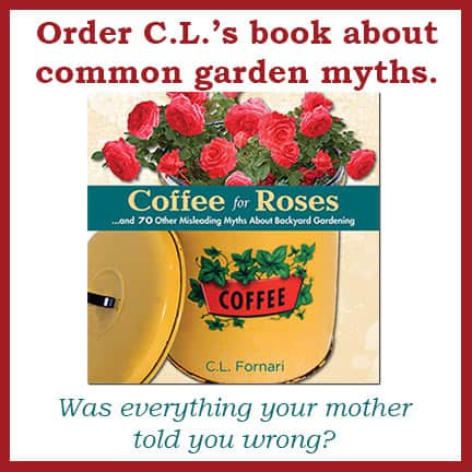 Coffee For Roses Book Cover