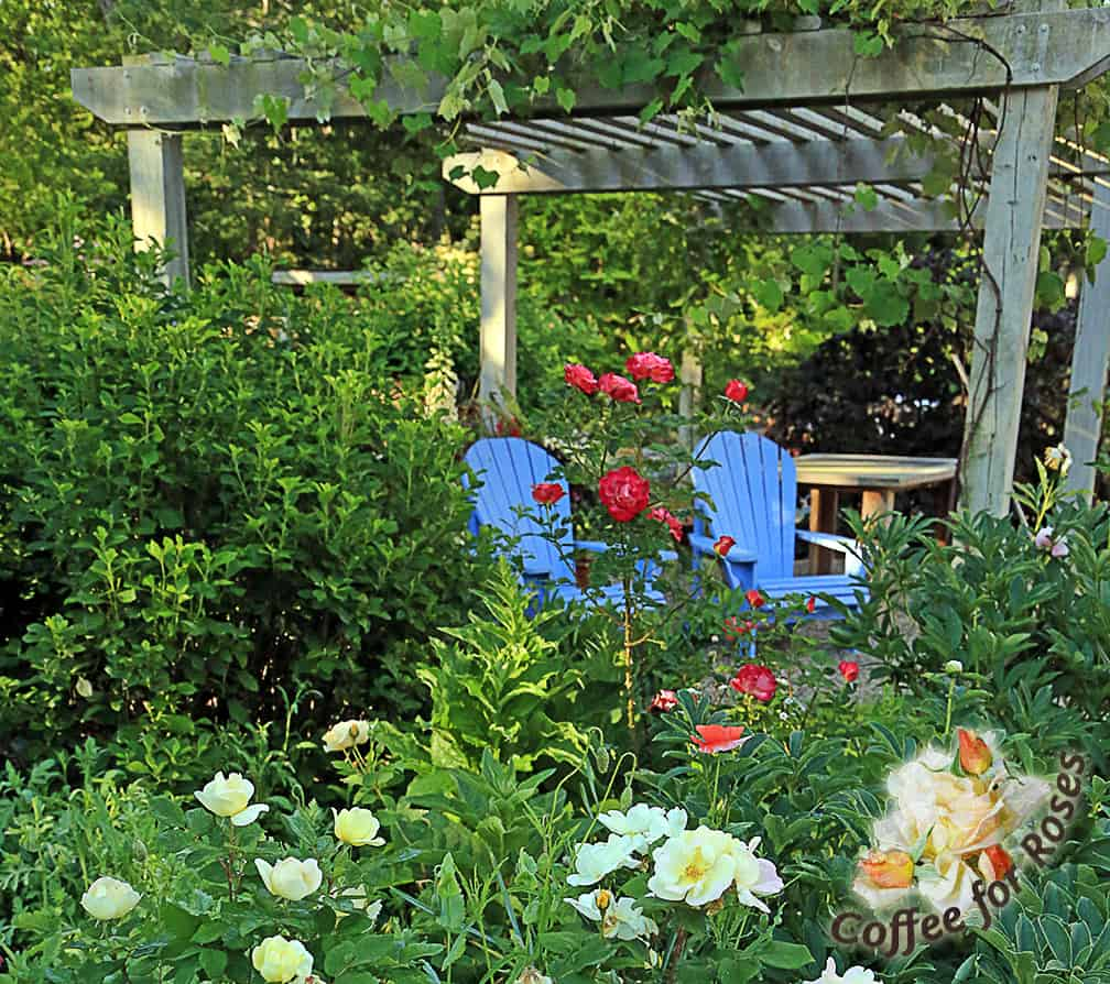 Adirondack chairs are perfect for sitting and drinking your favorite beverage because they have wide armrests that hold your mug or glass. I painted these blue so that even the color makes me smile!