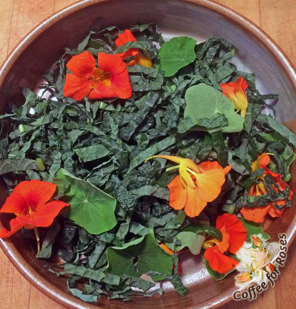 In our house a salad isn't complete unless it contains Nasturtium flowers and leaves.