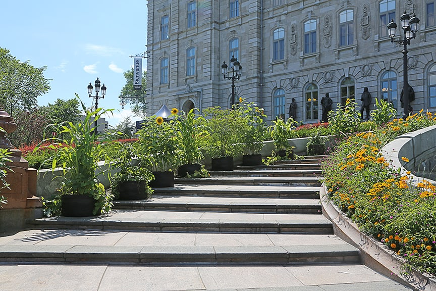 My favorite plantings were the large Smart Pot containers that lined the wide steps leading to the Parliament Building.