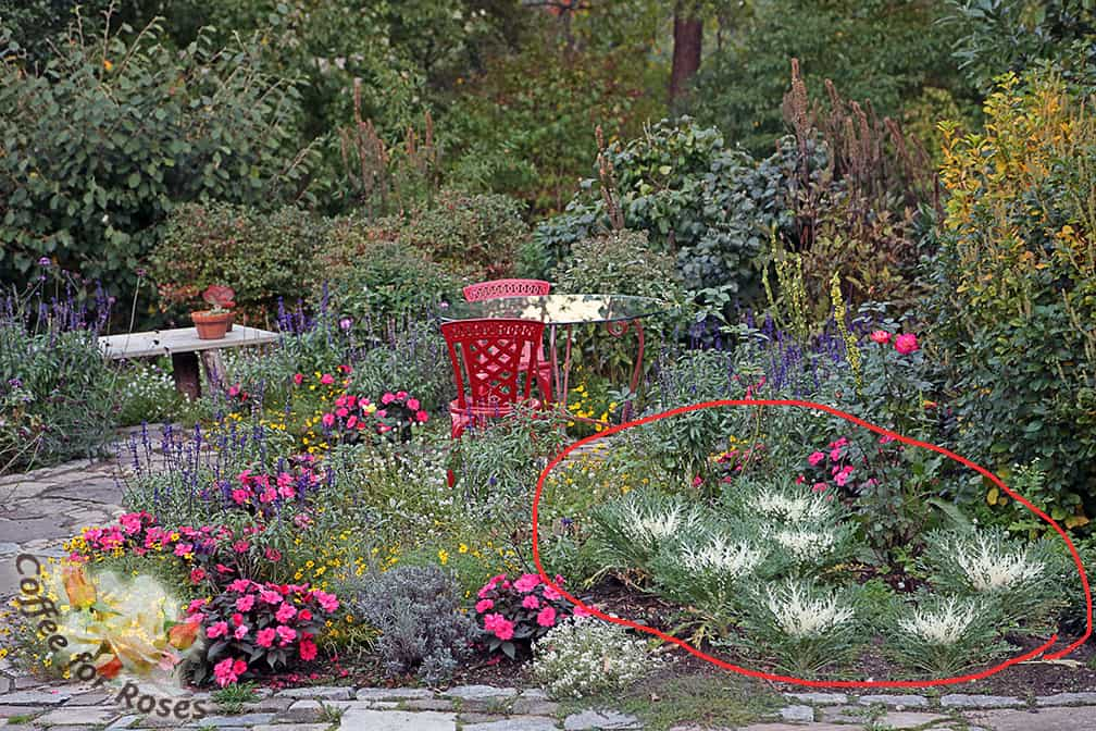 This Area Shows How One Space In The Garden Can Be Used For Several Seasons  Of