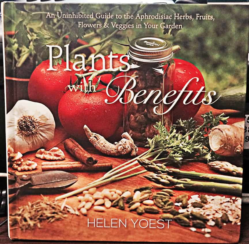 Written by Helen Yoest and published by St. Lynn's Press
