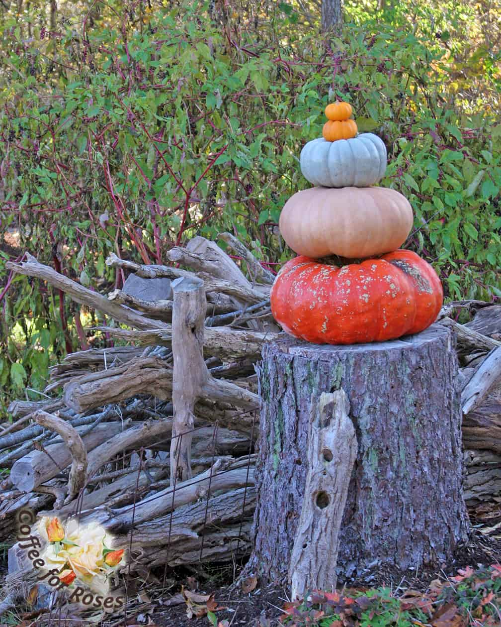 Pumpkin totems can be placed directly on the porch, next to the lamppost, or on top of a stump as well.