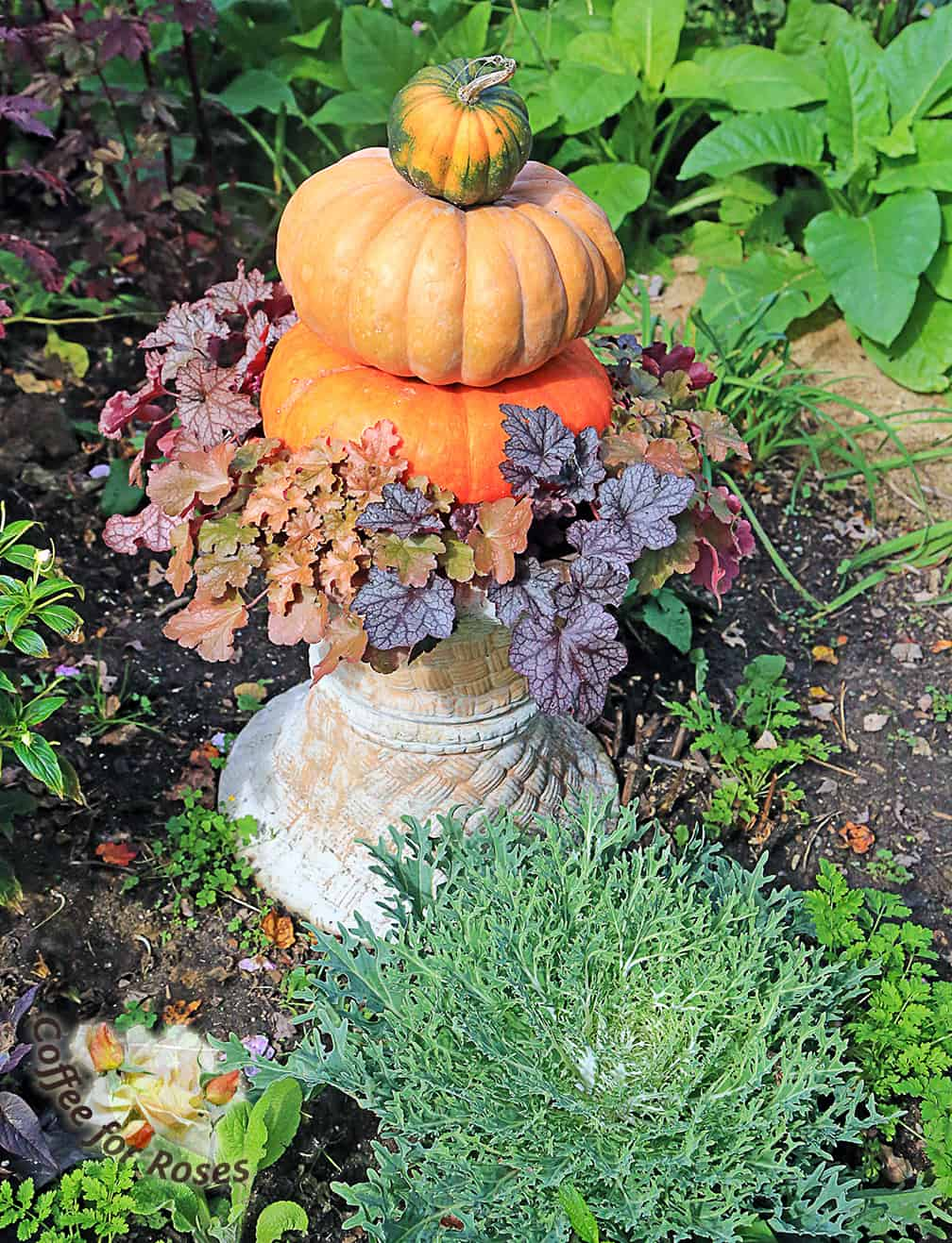 If you don't have an urn you can make a similar base from two flower pots, putting the bottom pot upside down. These two pots created the base and I planted a group of small heuchera plants around the bottom pumpkin.