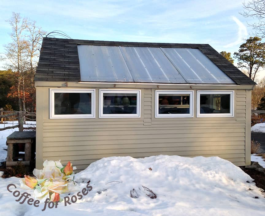 Solar Heated Seed Starting Shed Coffee For Roses