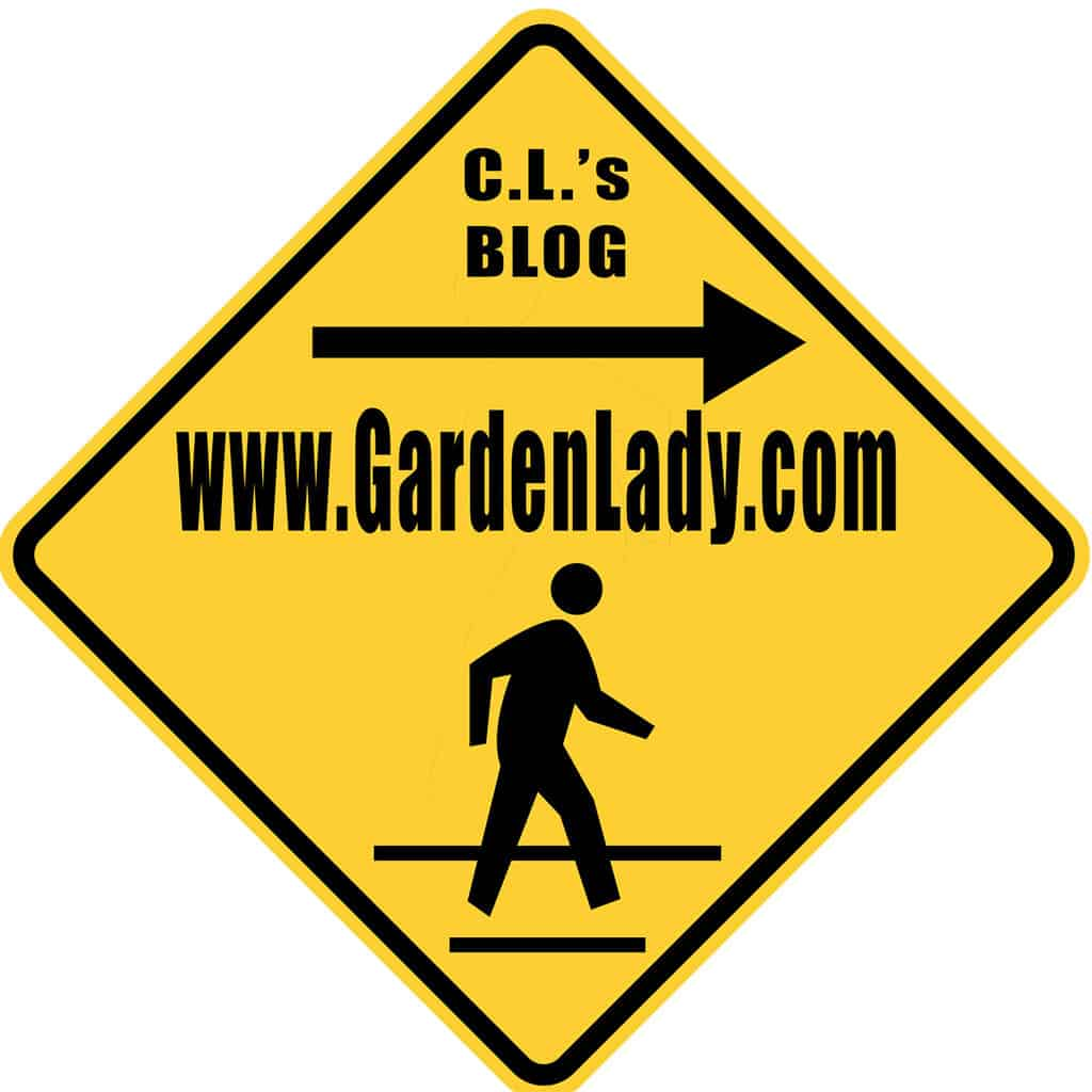 Looking for C.L. Fornari Blog?
