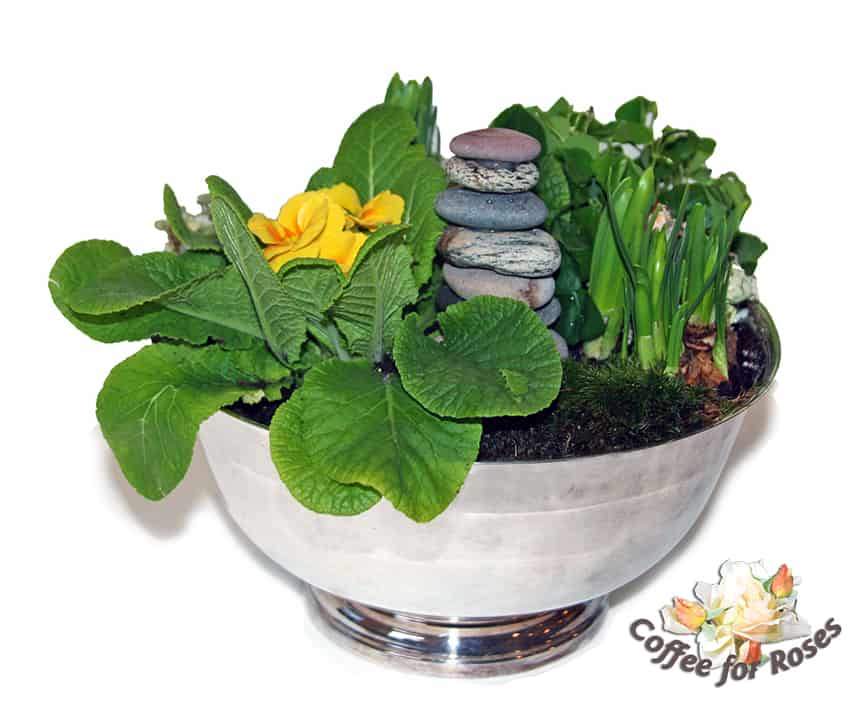A Silver Bowl of Spring