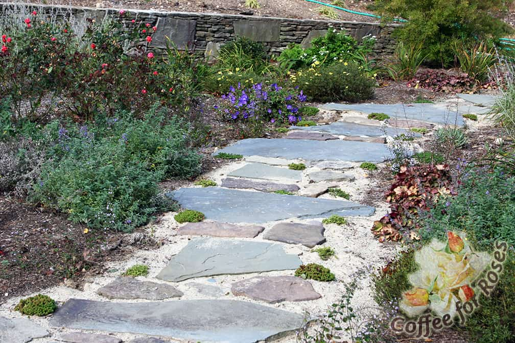 Here Is How My Walkway Looked The Summer I Built It Stepping Stones Were