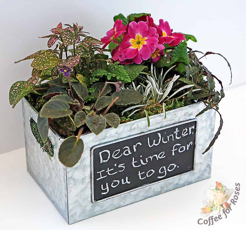 Plant A Garden With A Message