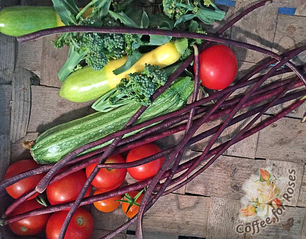 Garden Veggie Stirfry